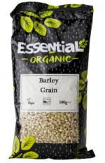 Image for Barley Grain