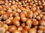 Image for Hazelnuts