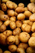 Image for Potatoes - New Cyprus