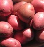 Image for Potatoes - Washed Reds